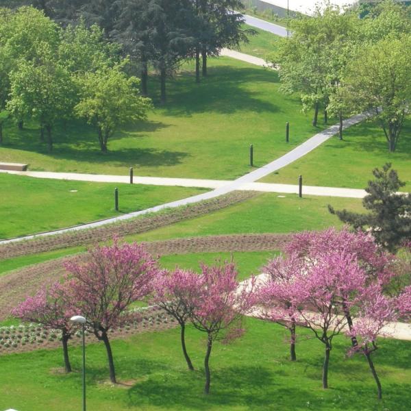 Parco Colonnetti 3
